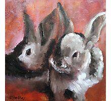 Baby Bunnies Abstract Print Photographic Print
