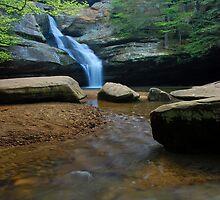 Cedar Falls by Jason Vickers