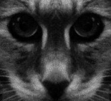 Forever Vigilant by owlspook
