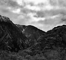 Canyon Spring by J. D. Adsit