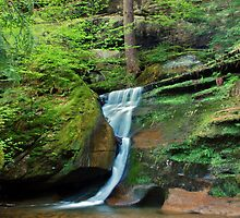 Moss Rock Falls by Jason Vickers