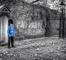 Standing Guard by WesternGear