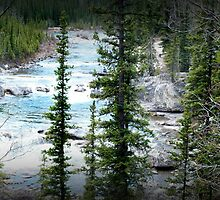 Bragg Creek Panoramic by Angela E.L. Clements