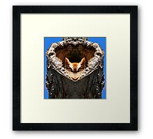 Home is where her heart is Framed Print