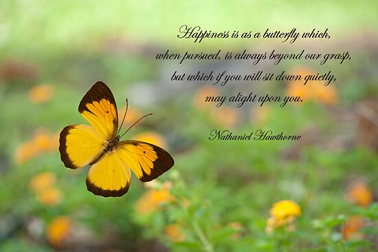 Happiness is like a butterfly . . . by Bonnie T.  Barry