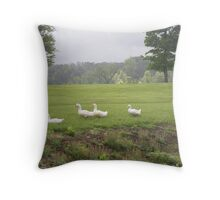 Duck's in Kentucky lands Throw Pillow