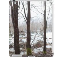 Misty Moss Walkers iPad Case/Skin