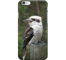 The Pole Sitter. iPhone Case/Skin