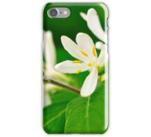 Fragrance from Heaven iPhone Case/Skin