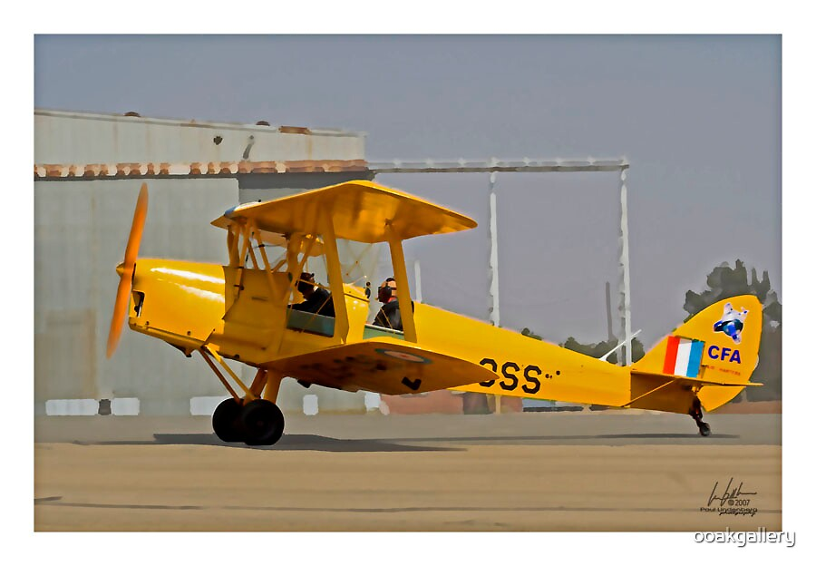 Tiger Moth ZS-MCL by J Leslie  Booth
