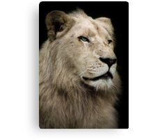 The White Lion Canvas Print