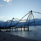 Chinese fishing nets, India by AravindTeki