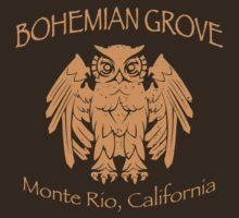 Bohemian Grove - Monte Rio, California by fearandclothing