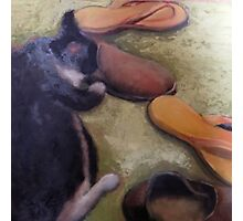 Shoe, Kitty Abstract Print Photographic Print