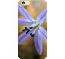Macro - Blue / Purple Flower iPhone Case/Skin