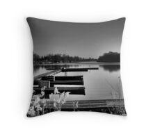 Old Danube Throw Pillow