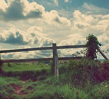 Beyond The Fence by MichelleOkane