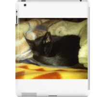 Little Cat iPad Case/Skin