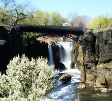 The Great Falls in the Spring, April 2015 - view 2 by Jane Neill-Hancock