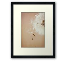 Time to Fly Free Framed Print
