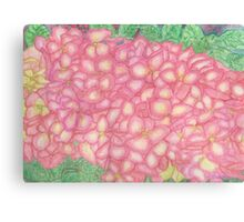 Pink Hydrangea Watercolor Canvas Print
