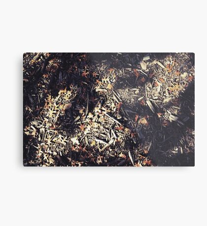 The Leaf Falls Metal Print