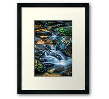Cascading Creek Framed Print