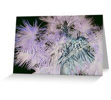 Palm Fireworks Greeting Card