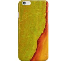 Mighty Mississippi original painting iPhone Case/Skin