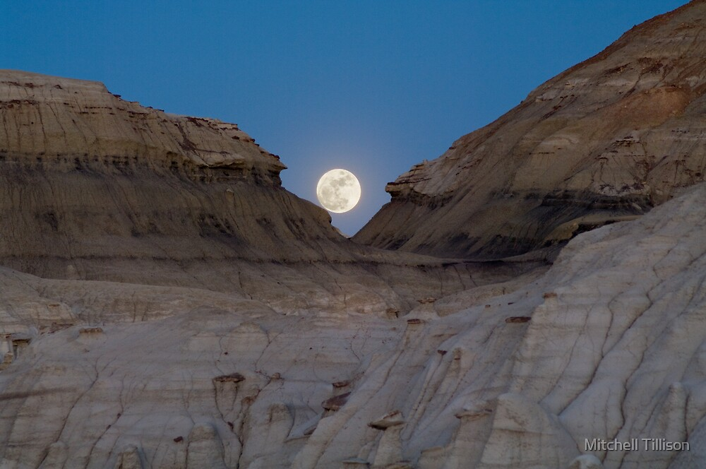 Moonrise in the Bisti by Mitchell Tillison