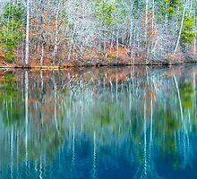 Reflections on  Pinnacle Lake by MPRPhoto