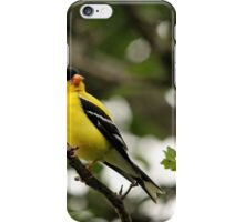Brilliant Observer Goldfinch iPhone Case/Skin