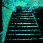 Steps II by Gal Lo Leggio