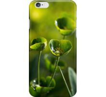 Afternoon Euphorbia iPhone Case/Skin