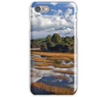 Rubicon Reflections iPhone Case/Skin