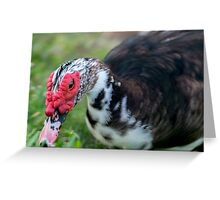 Muscovy Hunt Greeting Card