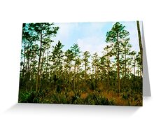 Pine Rockland Ecosystem Greeting Card