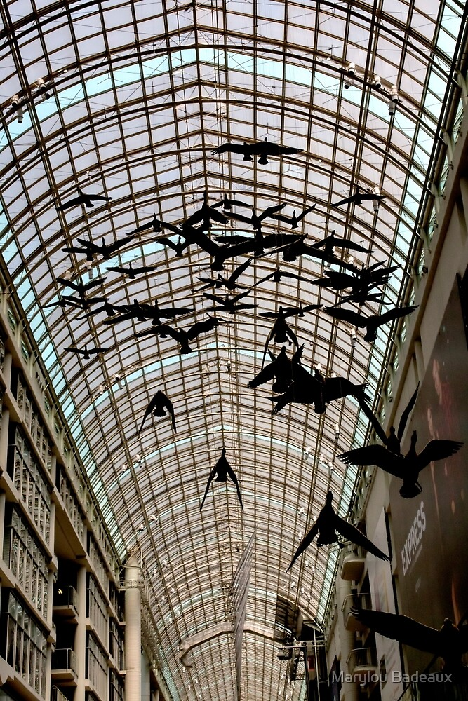 Birds in Flight by Marylou Badeaux