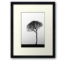 26.4.2015: Tree in the Fog Framed Print