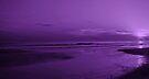 Sunset in Purple by Sandy Keeton