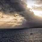 Sunset over Cape Tribulation by Tony Steinberg