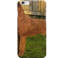 Well-trained Lakeland Terrier iPhone Case/Skin