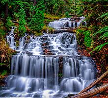 Beautiful Autumn day at Wagner Falls  by MPRPhoto