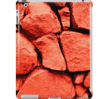 Red Rocks iPad Case/Skin