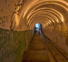 Tunneling by Geraldine Lefoe