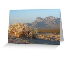 Providence Mts from Kelso Dunes Greeting Card