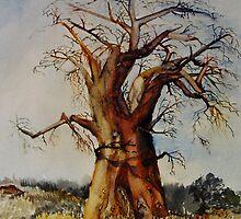 Baobab by Shirlroma