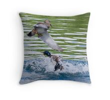 Gadwall V's Mallard Throw Pillow