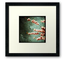 Floraison Rose Framed Print