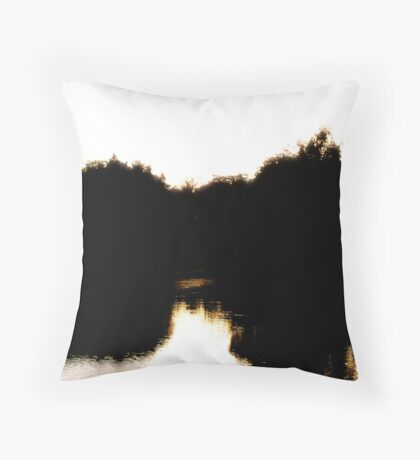 Half Empty and Half Full Throw Pillow